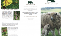 Saltby Pasture Trifold Leaflet