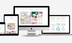 Suzy Stick It Website & Branding